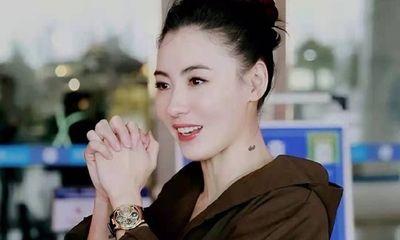 Trương Bá Chi khoe nhan sắc cực phẩm, đẹp không góc chết khiến Tạ Đình Phong bỗng dưng bị