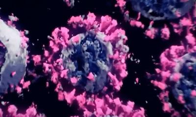Video: Hình ảnh 3D thực đầu tiên của virus SARS-CoV-2 gây ra đại dịch COVID-19