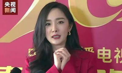 Tin tức giải trí mới nhất ngày 11/2: Nhan sắc gây tranh cãi của Dương Mịch khi thiếu photoshop