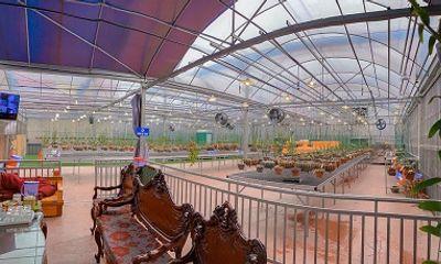 Trồng vườn lan 1000 cây, trai đẹp đất mỏ trở thành nghệ nhân trồng lan ở tuổi 24