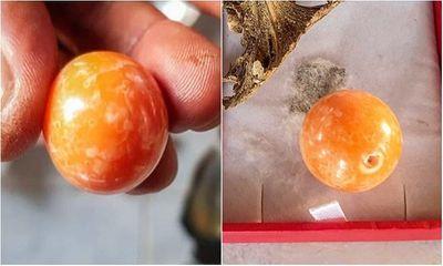 Sững sờ phát hiện viên ngọc trai tiền tỷ khi đang ăn ốc luộc