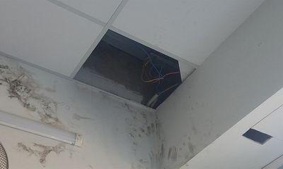 Vụ Điện Máy Xanh bị trộm 54 điện thoại trị giá 800 triệu đồng: Kẻ gian cắt điện, khoét mái tôn