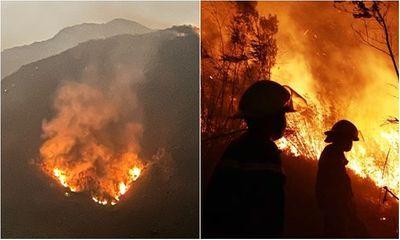 Lai Châu: Cháy rừng diện rộng, 1.000 người