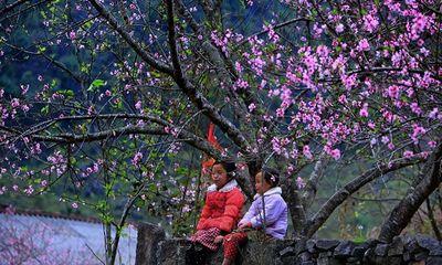 Đến với cảm xúc về tình đất, tình người Hà Giang qua bài thơ: