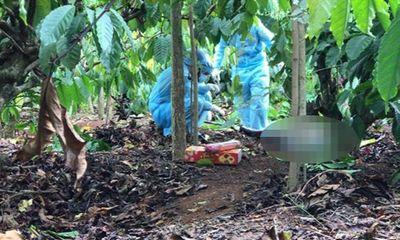Vụ phát hiện phần thi thể nam giới trong rẫy cà phê: Chủ tịch xã tiết lộ về nạn nhân