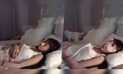 Nữ streamer xinh đẹp kiếm gần 2 triệu đồng nhờ… ngủ quên khi đang livestream