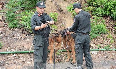 Vụ 4 người bị chém ở Lạng Sơn: Nghi phạm Dương Văn Quãng bị bắt ở đâu?