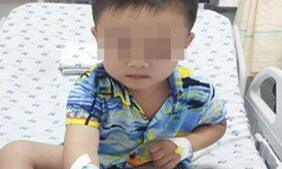 Bé trai 4 tuổi bị rắn cắn khi đi thả diều, bác sĩ chỉ 8 cách sơ cứu hiệu quả