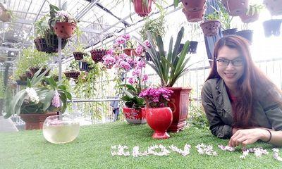 Khu vườn lan bạc tỷ của cô giáo xinh đẹp Phùng Thị Thoa