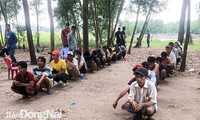 Triệt phá sới gà ở vườn tràm tại Đồng Nai: Con bạc khai ra