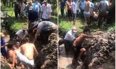 Vụ phát hiện xác chết trong ống cống thoát nước ở vườn sầu riêng: Hé lộ nguyên nhân