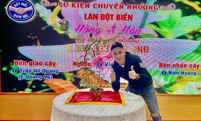 Ông chủ vườn lan 9X Trần Hồ Quang chia sẻ cơ duyên, được quý nhân giúp đỡ