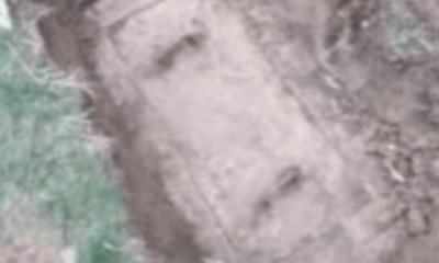 Hì hục đào hộp bê tông sau vườn vì tưởng kho báu, thứ bên trong khiến người đàn ông chạy vội