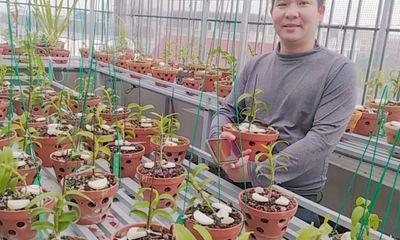 Xã hội - Vũ Hoàng Anh chàng trai 8X chia sẻ kinh nghiệm và đam mê với vườn lan của mình