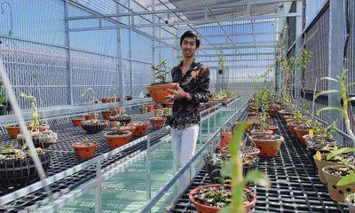 Xã hội - Cường Khuê Các chàng trai 8X và những thành công trong nghề trồng lan