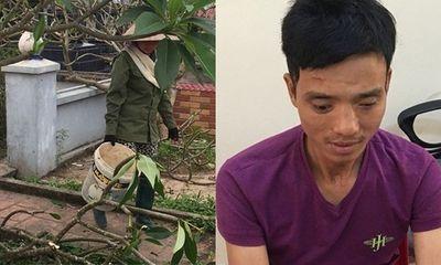 Vụ hàng trăm ngôi mộ ở Hải Phòng bị đập phá: Hé lộ danh tính nghi phạm