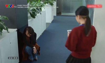 Hướng Dương Ngược Nắng tập 58: Minh rụng rời trước tin bố Hoàng bị bắt giam