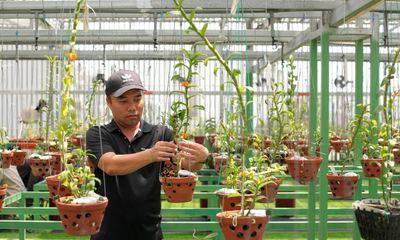 Phát triển từ đam mê trồng hoa lan