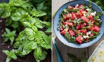 Biến dưa hấu thành món salad mát lạnh người già đến trẻ nhỏ đều mê