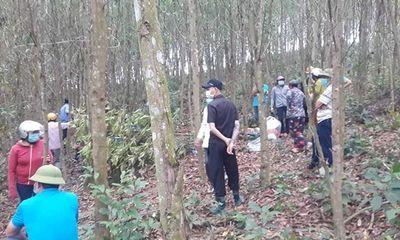 Vụ người đàn ông chết trong tư thế treo cổ ở rừng keo: Nạn nhân mất tích nhiều ngày