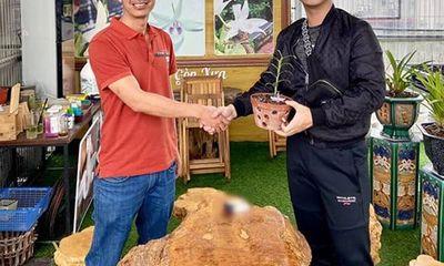 Nghệ nhân Hoàng Đình Hiếu chia sẻ niềm đam mê trồng hoa lan
