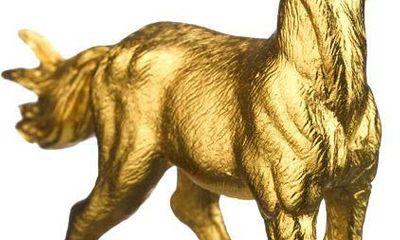 Quà Tết độc, lạ: Ngựa dát vàng, dưa hấu bản đồ Việt
