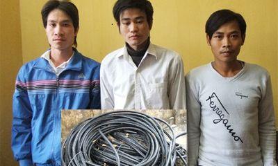Trộm cắp dây cáp gần 200 triệu đồng ở Thanh Hóa