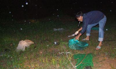 Gần 57kg động vật hoang dã được về rừng trong đêm