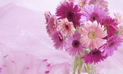 Những loại hoa mang lại may mắn cả năm
