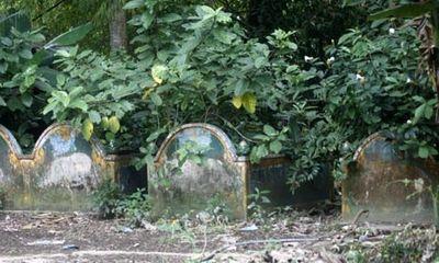Kỳ lạ ngôi chùa nuôi heo thành tinh báo oán ở VN