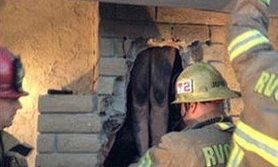 Giải cứu người phụ nữ khỏa thân bị kẹt trong ống khói