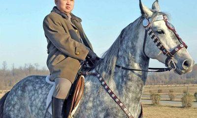 Nhà lãnh đạo trẻ Kim Jong-un đã trưởng thành?
