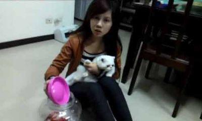 Phẫn nộ nữ sinh nhốt mèo vào lọ kín để phạt