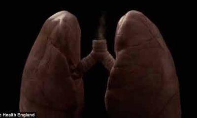 """Clip: Quá trình thuốc lá """"hủy hoại"""" các cơ quan trong cơ thể"""
