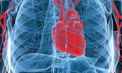Bật mí 51 sự thật thú vị về cơ thể con người