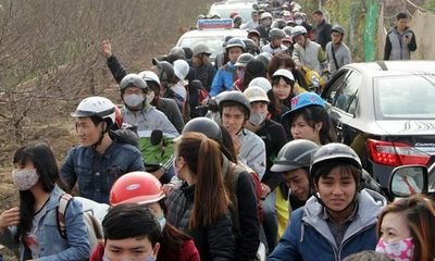 """Giới trẻ """"đổ bộ"""" vườn đào Nhật Tân chụp ảnh, đón tết sớm"""