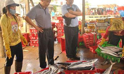 """Thương lái Trung Quốc """"lách luật"""" mua cua Việt: Cần thận trọng!"""