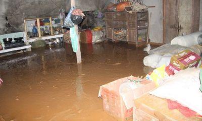 Vỡ đập chứa bùn: Bùn thải trải dài gần 1km xuống khu vực dân cư