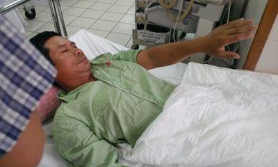 Huế: Rắn lục đuôi đỏ cắn nhiều người nhập viện