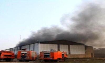 Nghệ An: Cháy dữ dội công ty gỗ, khói bốc cao hàng chục mét
