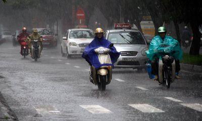 Thời tiết ngày 5/2: Miền Bắc tiếp tục mưa và rét đậm, rét hại