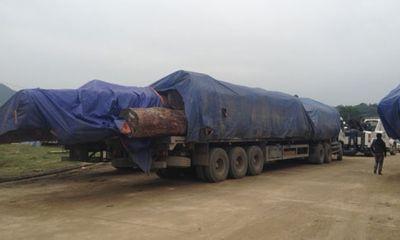 Bắt 45 xe chở gỗ quá tải ở cửa khẩu Cầu Treo