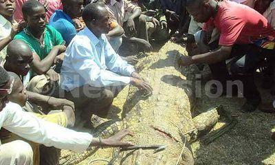 Một mình giết cá sấu khổng lồ nặng 1 tấn trả thù cho vợ con