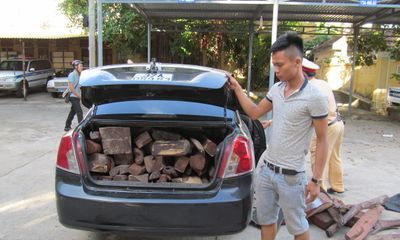 Bắt xe vận chuyển gỗ trắc trái phép