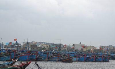 Ứng cứu kịp thời 8 ngư dân gặp nạn ở Trường Sa chạy bão Hagupit
