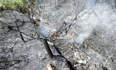 Hơn 1.000 người cứu chữa cháy rừng ở Sóc Sơn, Hà Nội