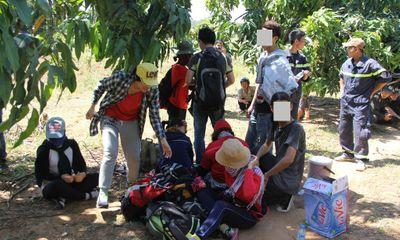 Giải cứu hàng chục sinh viên đi du lịch bụi bị mắc kẹt trên núi Bà Đen