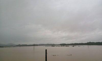 Ảnh hưởng của bão: Giao thông chia cắt, hàng trăm ha lúa bị