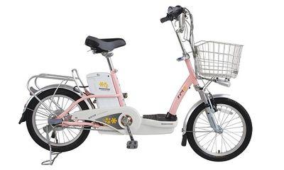 Những chiếc xe đạp điện
