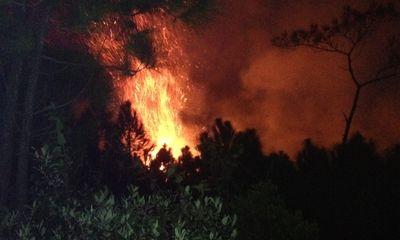 Cháy lớn, gần 10ha rừng thông 20 năm tuổi bị thiêu rụi